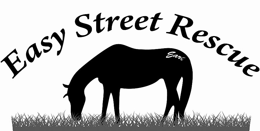 Easy Street Horse & Barnyard Rescue, Inc.